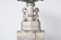 3/4 800 globe valve