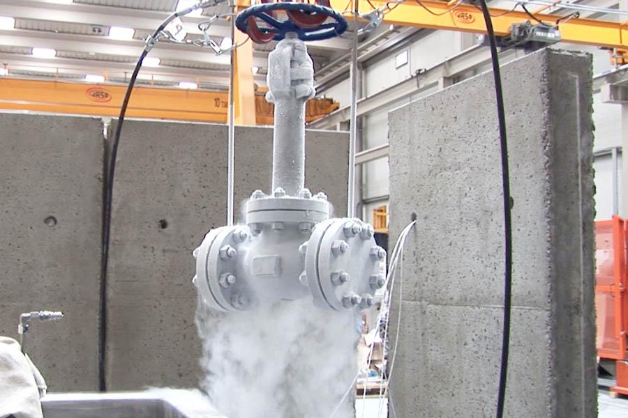 Cryogenic valve testing